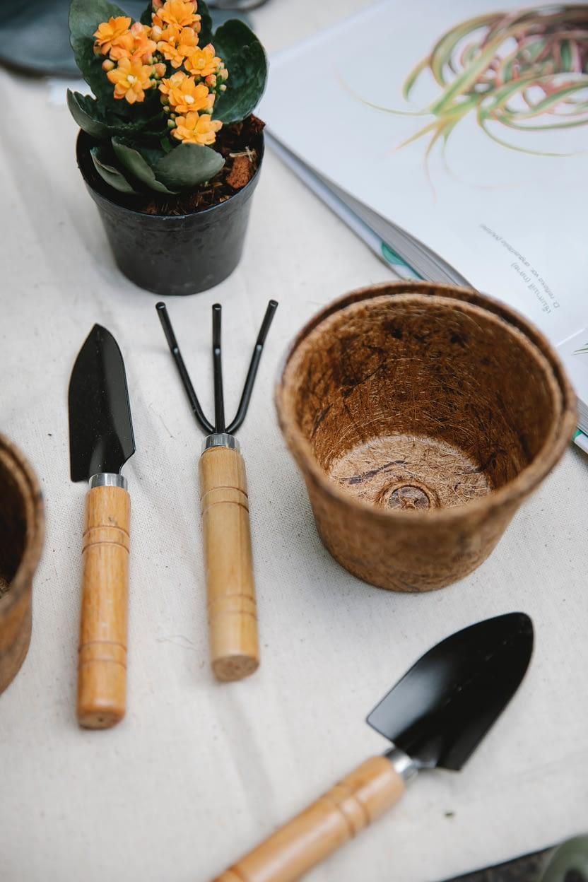 essential garden tools names