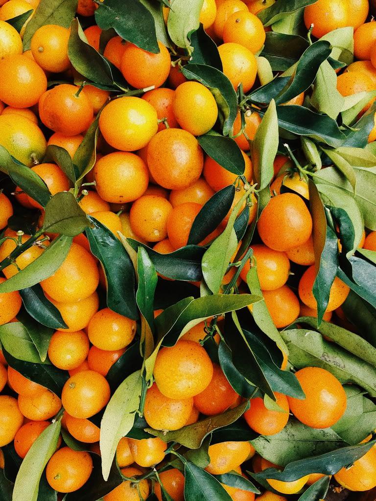 best oranges for juicing